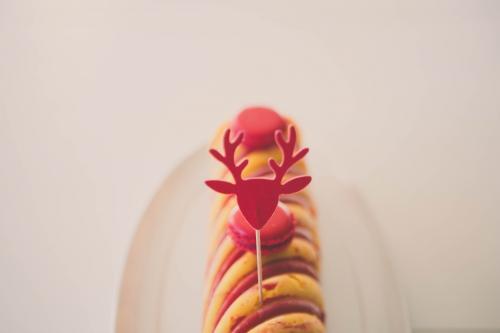 bûche panna cotta citron et framboise,buche panna cotta,insert framboise,buche rouge et jaune,buche de noel