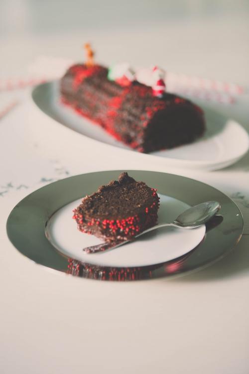 buche vegan,buche chocolat noisette,buche sans oeufs sans lait,buche noisette,buche de noel,bûche vegetale chocolat et noisettes