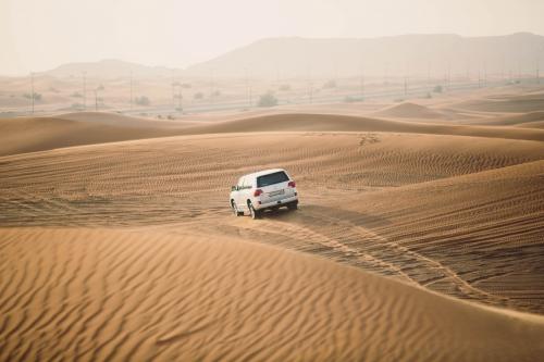 Désert de Dubaï, séjour à dubaï,level 43,burj khalifa,skyview bar,ewaan restaurant,dubaï mall,sheikh zayed,emirates palace